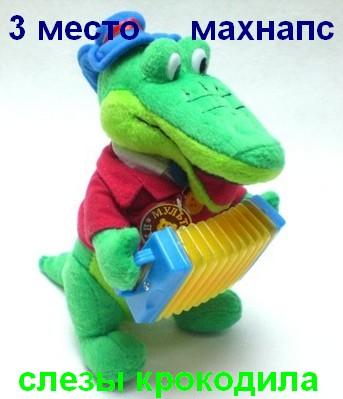 3 место: Махнапс